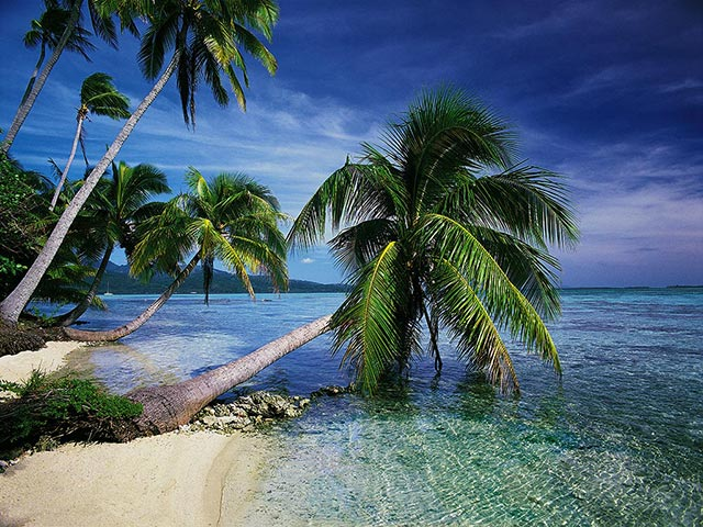 Click to view Beautiful Tropical Islands vol.1 1.0.3 screenshot