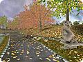 Autumn Time 3D: View larger screenshot